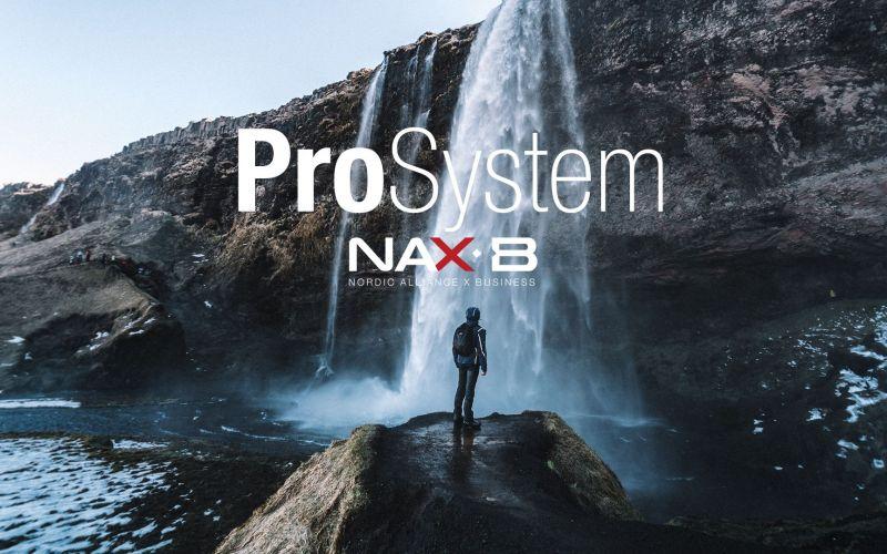 ProSystem by NaxB