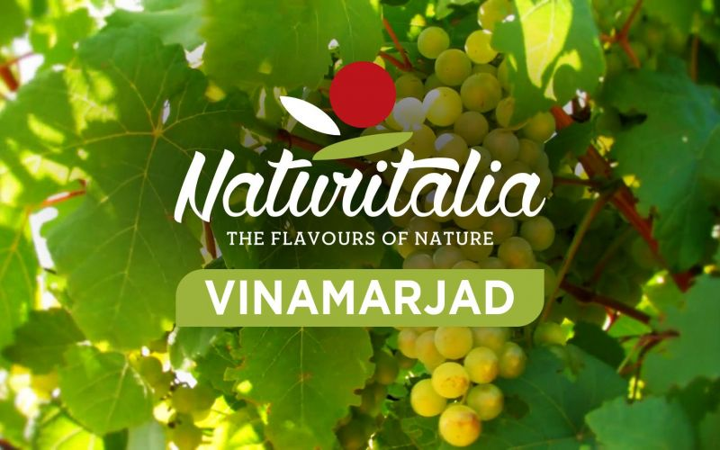Naturitalia - Table grapes