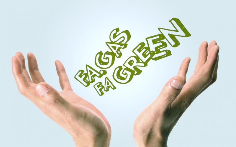 Fa.Gas - Fatti Green!