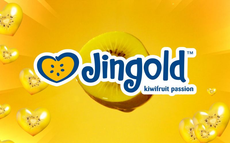Jingold