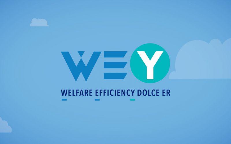 WE(Y) Dolce ER